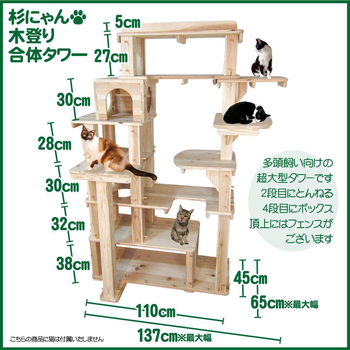 ステップたくさん!冒険心くすぐるタワーです